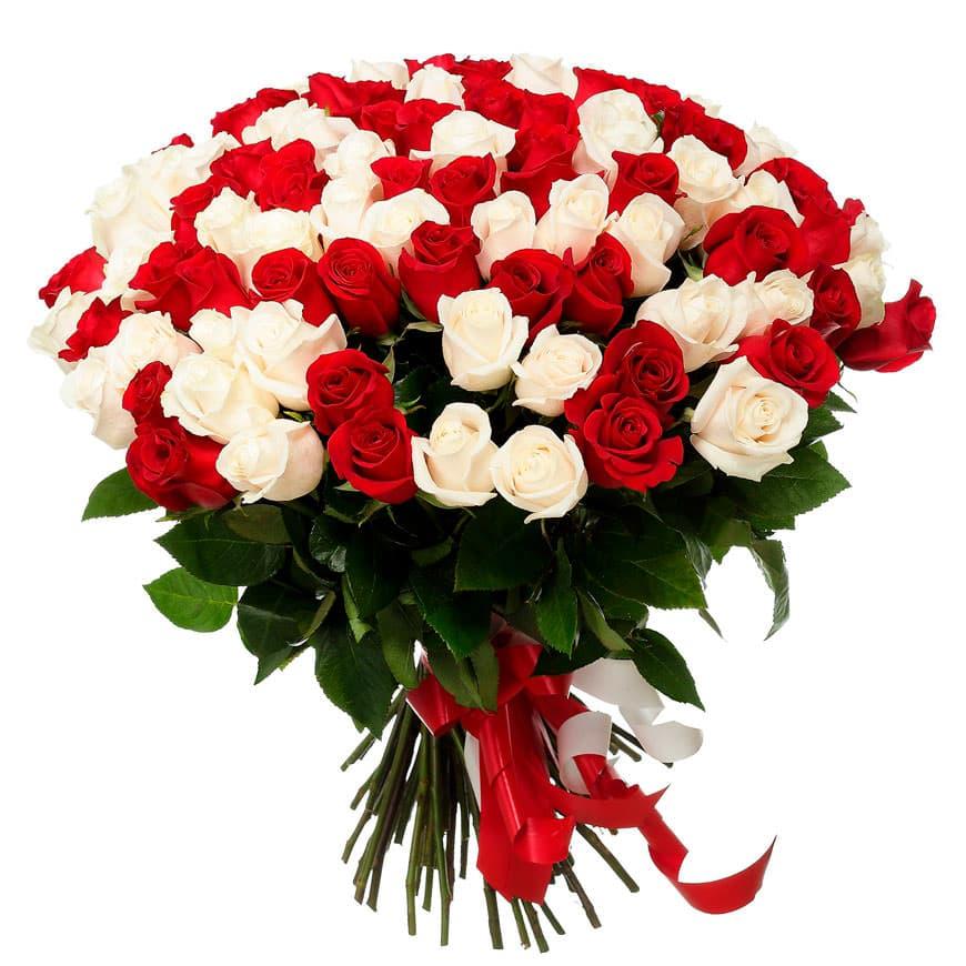 большие открытки с розами некоторых случаях признаки
